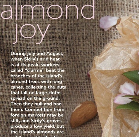 Almonds in La Cucina Italiana