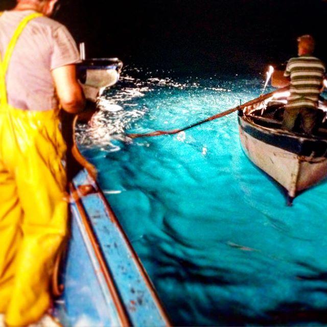 Gusti Adventures: Fishing Anchovies In Cetara